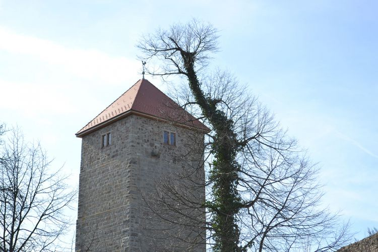 Bergfried-lichtenburg-ostheim-10